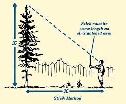 field expedient tricks for estimating the height and width of