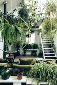 jungle themed bedroom jungle themed bedroom ideas exciting jungle themed room medium size