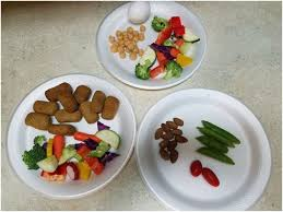 primate diet and recipes monkey feeding tips and ideas