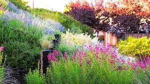 How To Landscape A Sloped Backyard - a hillside garden u0027s ingenious design sunset