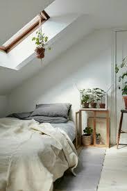 plante verte dans une chambre 1001 idées déco de chambre sous pente cocoon
