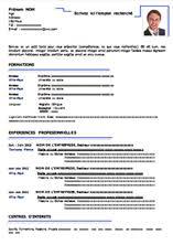 curriculum vitae formato pdf da compilare esempio di curriculum vitae da compilare gratis in formato word