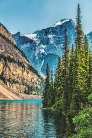 mobile hd wallpapers moraine lake tree mountain mobile hd