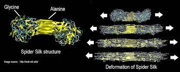 spider silk nanotechnology structure