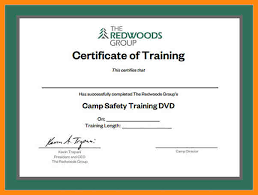 6 training certificates templates nurse resumed