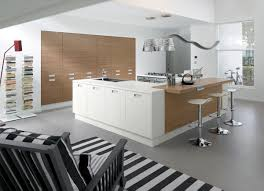 fetching white kitchen design idea feat black and white stirpes