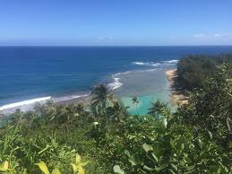 the top 10 things to do near st regis princeville resort