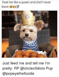 Pretty Meme - 25 best memes about feed me and tell me im pretty feed me and