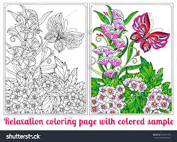decorative flowers birds butterflies coloring book stock vector
