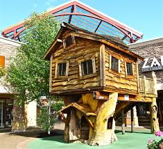 Coolest Tree Houses Small Tree House Design Pictures Cool Tree Houses Pinterest