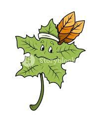 cartoon leaf happy face vector royalty free stock image storyblocks