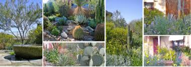 eco friendly landscaping firm mixes beauty with sustainability in