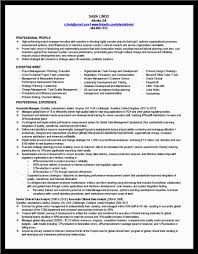 Volunteer Resume Example by Budget Analyst Resume Business Analyst Resume Template Resume