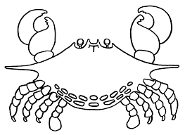crab coloring pages chuckbutt com