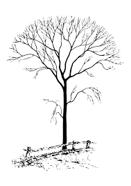 bare tree coloring pages coloring home