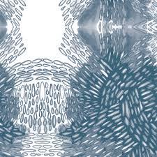 paquette reynakos 4 jpg