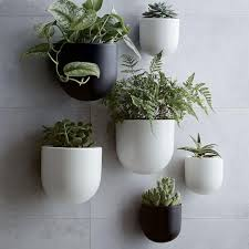 Hanging Ceramic Planter by Best 25 Wall Planters Ideas On Pinterest Natural Framed Art