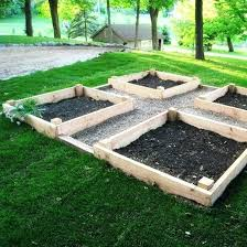raised bed companion vegetable garden layout raised vegetable