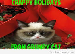 Grumpy Cat Memes Christmas - grumpy cat funny christmas messages and memes 2015