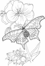 Hard Flower Coloring Pages - 4044 best coloring pages images on pinterest drawings