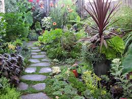how to make your house green how to make a garden path large and beautiful photos photo to