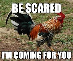 Rooster Meme - be scared i m coming for you red team rooster quickmeme