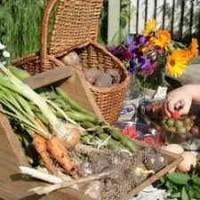 no dig gardening and building healthy living soil in warrington