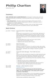 Director Resume Examples by District Sales Manager Resume Samples Visualcv Resume Samples