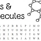 cell biology word searches u2013 skip the