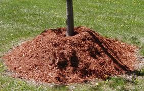 Types Of Garden Mulch Mulch Matters North Carolina Cooperative Extension