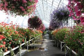 winter gardens duthie park home design inspirations