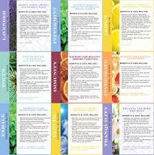 The Best Way To Put by Essential Oils 101