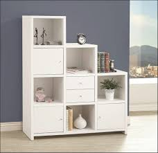 Small Bookcases With Glass Doors Bookcases Storages U0026 Shelves Small Bookshelf With Doors To Think