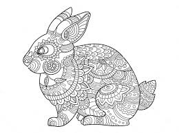 rabbit zentangle coloring page art pinterest zentangle