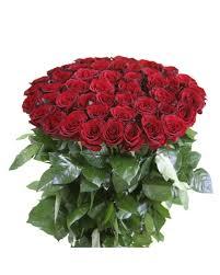 Long Stem Rose Vase 50 Long Stemmed 20