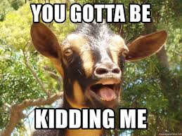 You Gotta Be Kidding Me Meme - you gotta be kidding me illogical goat meme generator