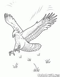 coloring page storks and