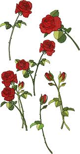 scent of roses machine embroidery design