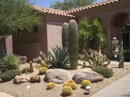 desert rock garden rock front yard desert landscaping ideas