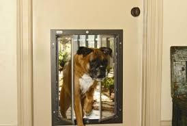 compassionate vinyl sliding glass patio doors tags sliding glass