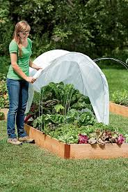 what is spring your guide to starting a vegetable garden beginner gardens for