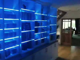 Bookcases With Lights Colour Changing Led Lights On A Bookcase With Glass Shelves Youtube