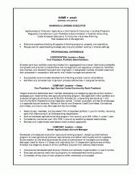 Banker Resume Good Character Analysis Essay Salary Requirement In Resume Esl