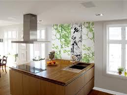 modern home decoration with swedish kitchen design ideas with new