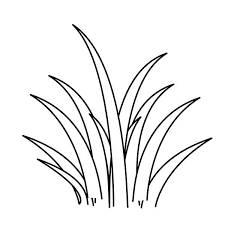 sea plants coloring pages realistic grass and african plants coloring pages