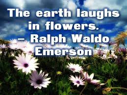 think green 30 thoughtful quotes about the environment the
