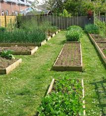 garden formal herb garden perennial herb garden herb garden plans