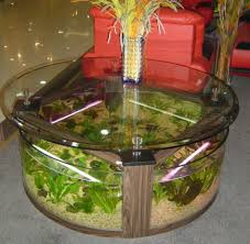 coffee table stunning aquarium coffee table decor home decorations