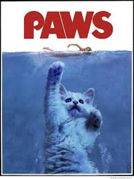 Jaws Meme - the cat version of jaws weknowmemes