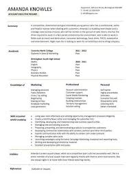 executive resume exles 517 best resume images on resume format